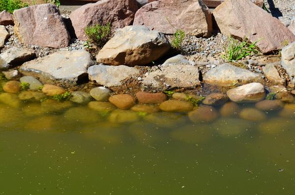 кладка камней в пруду